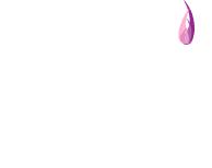 Dianne's Custom Candles Logo